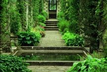 Design~ Outdoor Gardens  / by Henry W. Powell