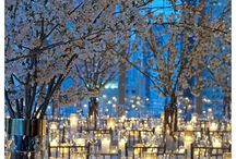 Winter Weddings / Glittering white snow, cool blue ice - bring the beauty of winter to your wedding celebration with these ideas.  / by Colin Cowie Weddings