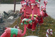 Vlb christmas / by Nancy Raines