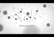 motion graphics / by Eleanor Nugent