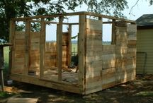 Chicken coop / by Terry Bell
