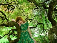 trees / There's a little Druid in all of us / by Eileen Dreyer