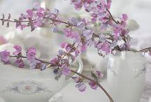 Cottage Lavender / by Vicki Beckman