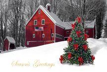 Christmas ~ Winter ~ Reds & Greens / by Susan Bambino