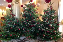 Festive Season @lerichemond / decorations.... / by Le Richemond