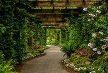 Gardens / by Green Cottage Creek