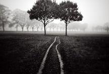 Roads / by Jeffrey Johnston
