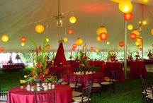 Weddings & Parties!  / by Lindsey Cronin
