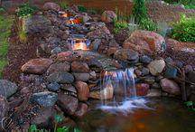 Garden / by Kimberly Ritter
