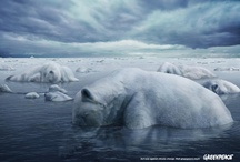 Inspiring Greenpeace creative / by Greenpeace Australia Pacific