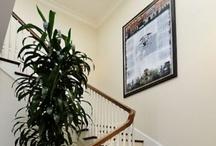 Stairways Need Light, Too / by VELUX America