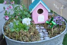 Fairy Gardens / who can resist a garden for fairies? / by Jennifer Kable