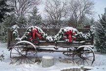 Christmas Ideas / by Nancy Benne
