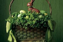 Here comes Peter Cottontail / Spring and Easter ideas / by Vickie Del Grosso