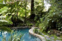 tropical backyard inspiration / by Donna Grace