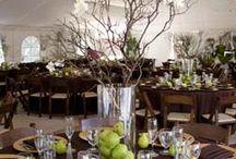 Wedding Ideas/Planning / Cate's Wedding Day / by Cheryl Hoyt Straight