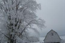 Winter / by Dana Schwartz