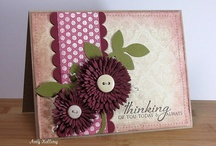 PTI Card Inspiration / by Susi K