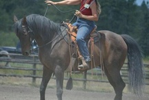 Natural Horsemanship  / by Barbara Blizzard