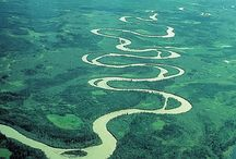 Meander / by Mary P Brown