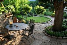 Backyards / by Jules Photo & Design
