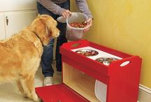 buildt it yourself for pets / by Humboldt Pet Supply