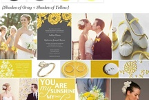 Wedding: Colors and Inspiration Boards   / by Amanda Akers
