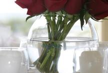 Wedding / by Marina Dove