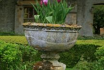 Landscaping, Urns And Window Boxes / by Charlotte Harris