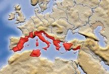 Historical Maps / by Samuel Lloyd