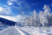 Snow / by Garden Design