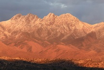 Arizona / by Four Peaks Brewing Company