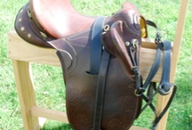 Saddle choices / by Fiona Grosser