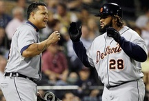 Detroit Tigers / The Detroit Tigers Baseball Team / by Kimberly Dare