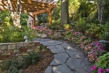 Home: Garden path / by Jenny Prust