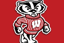 Wisconsin Badgers / by Rebecca SE