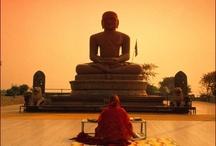 Budismo / by Barba Bakufu