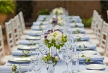 Bridal Shower - Something Blue / by Kaitlyn Lowery