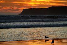 Beach Living / by Hotel del Coronado