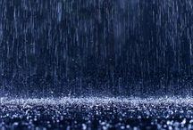 Rainy daze  / by Lori Hager