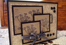 scrapbook/cards / by Amy Williams