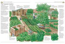 Garden Ideas / by Connie Simonds