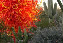 Colores cálidos / Flores y plantas en la gama de colores cálidos / by Andrómeda Floristería Creativa