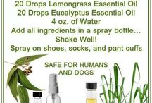 Essential Oils / by Kimberly Hunt