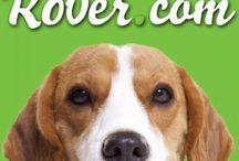 Coupon Codes for Pet Lovers / Coupon codes for products and services for dog and cat lovers. / by DogTipper.com