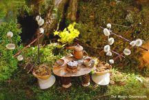 Fairy Garden & Miniatures / by Kasey Perkins