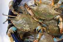 Crabby!! / by Michelle Sprunger