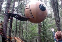 Treehouses / by Linda Fehr Meilink