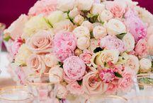 Wedding / by Jessica Deist