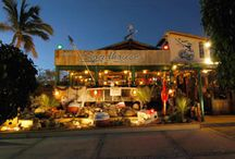 Road House Restaurant Cabo San Lucas / by Visit Baja California Sur